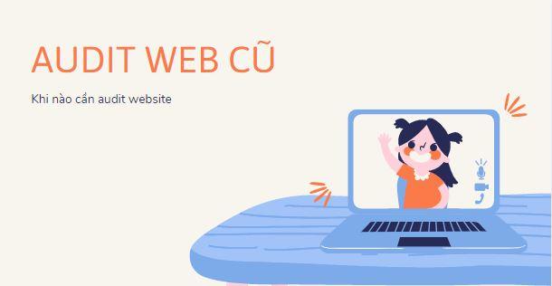 Audit website cu
