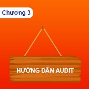 Huong dan seo audit